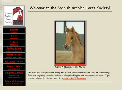 spanish arab society