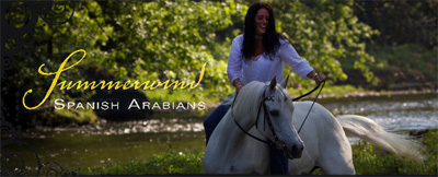 Summerwind Spanish Arabians